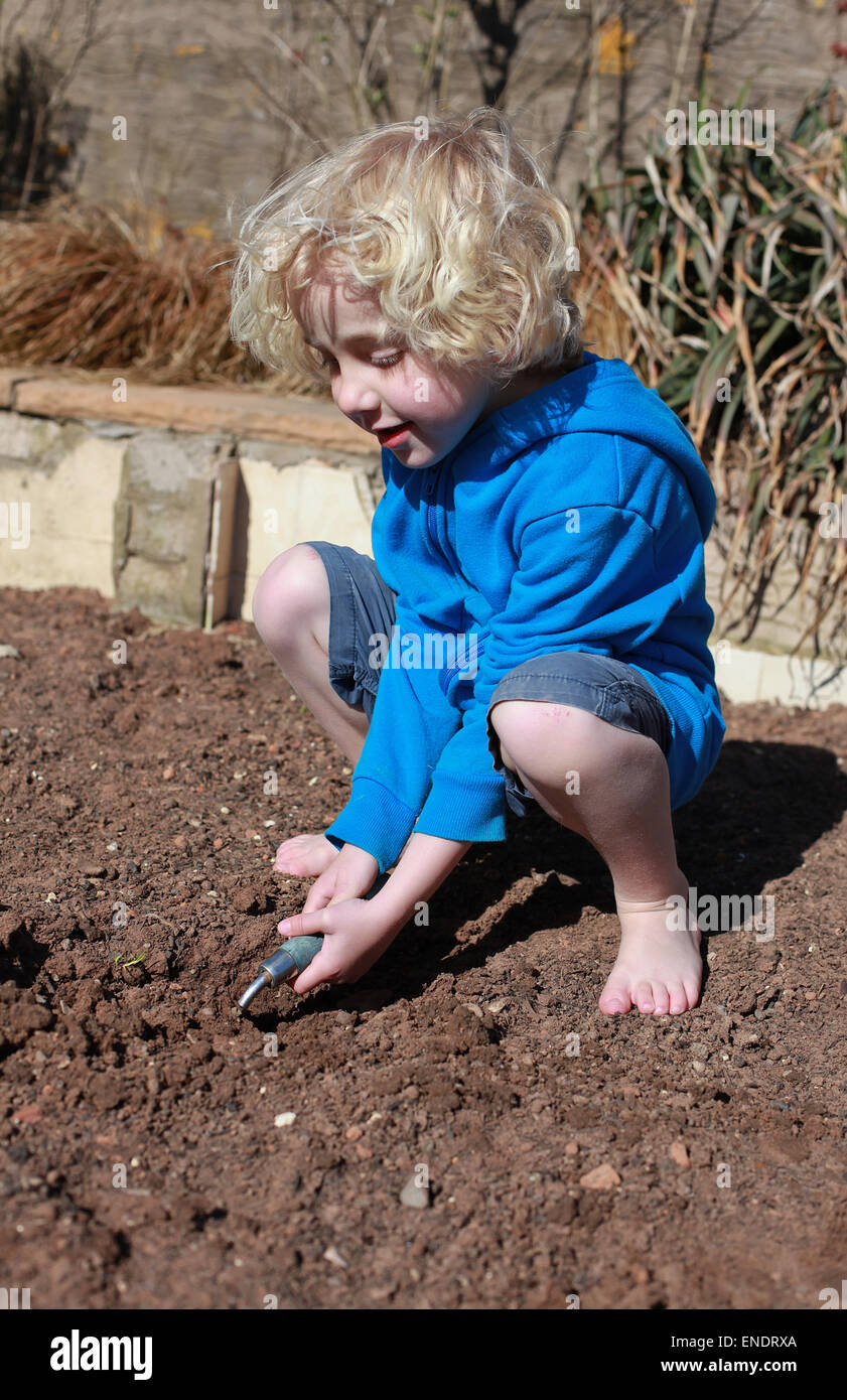 Little blonde haired boy gardening on a sunny day - Stock Image