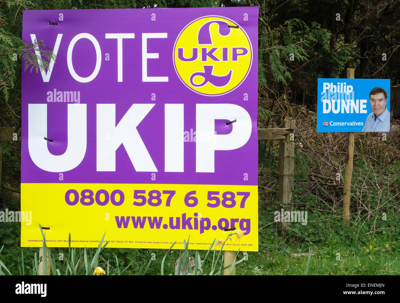 Shropshire, UK. During the 2015 General Election a big UKIP poster dominates a small Conservative placard - Stock Image
