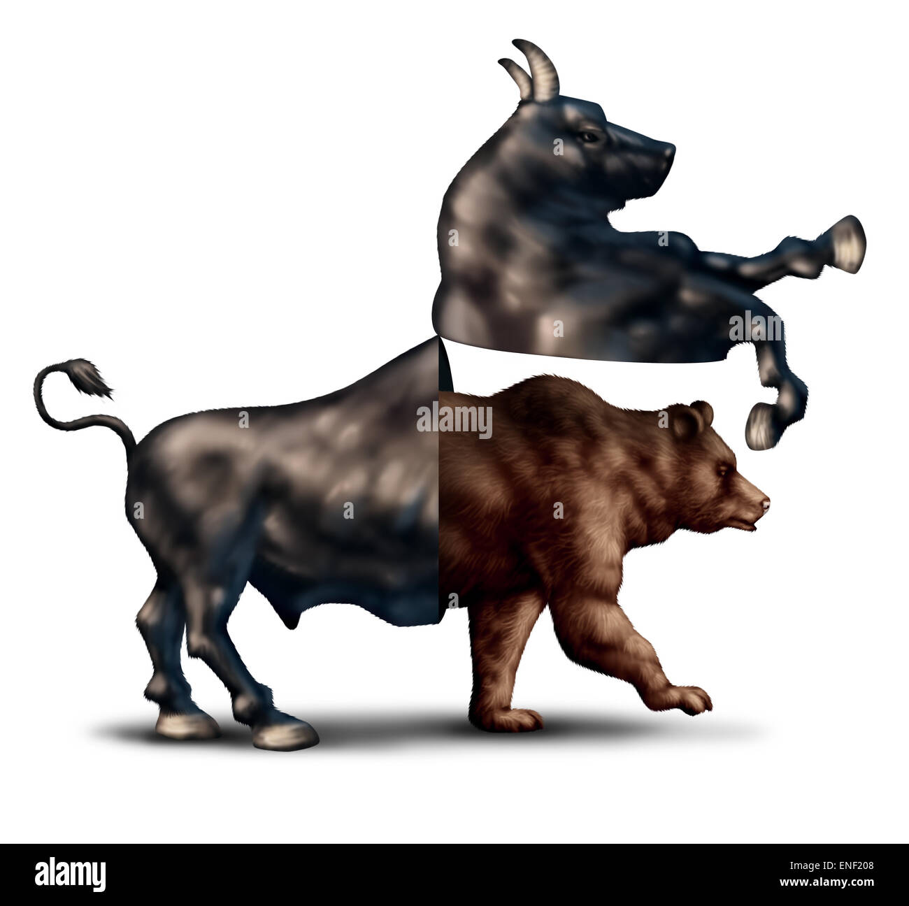 Bear market correction financial business concept as a bull opening up and revealing an emerging bearish stock market - Stock Image
