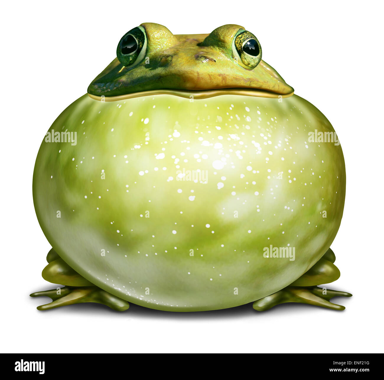 Healthy environment symbol as a green frog with an inflated throat as an ecological concept of communication with - Stock Image