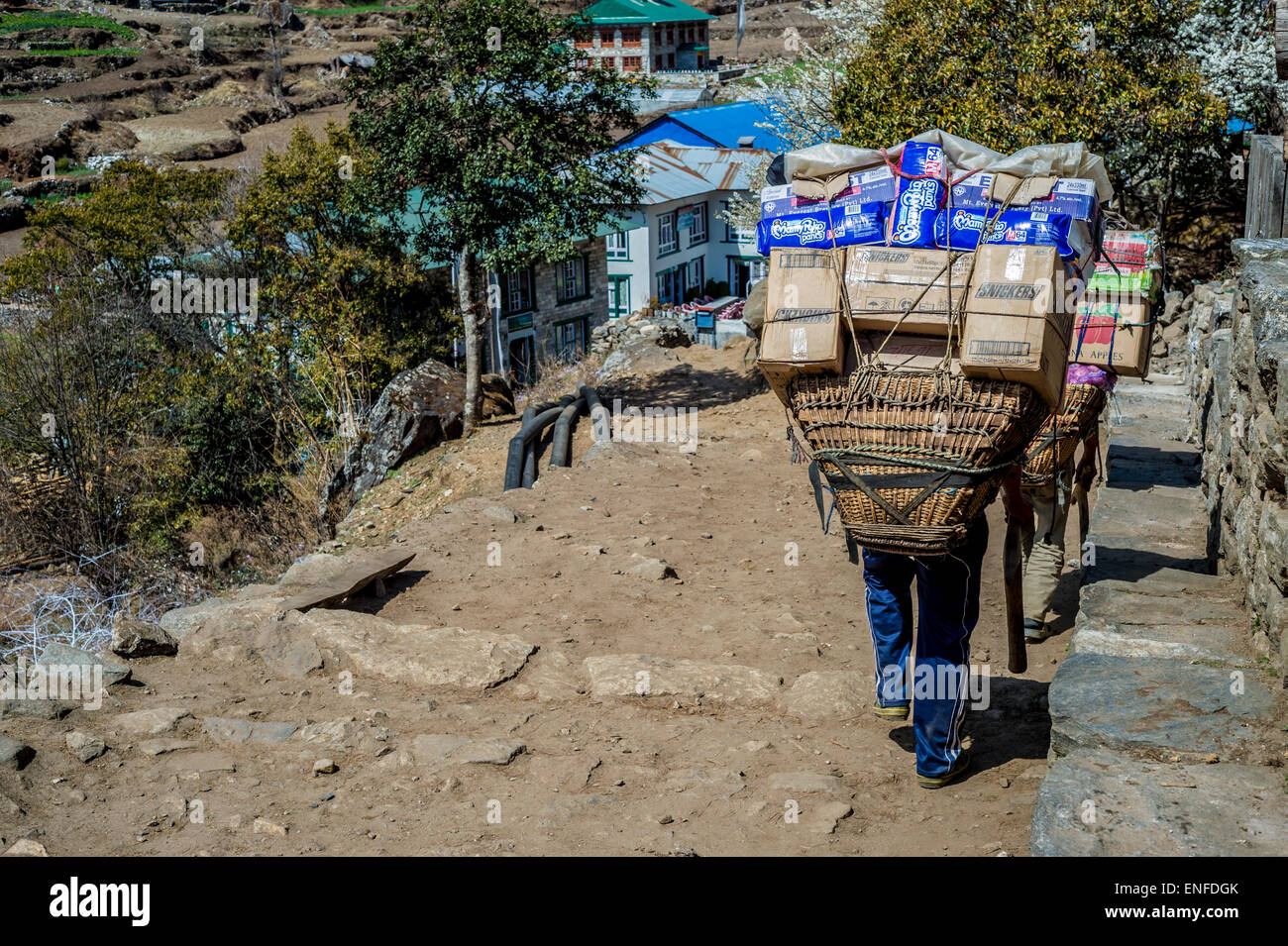 Back view of Nepalese porters, carrying a heavy load, Nepal - Stock Image