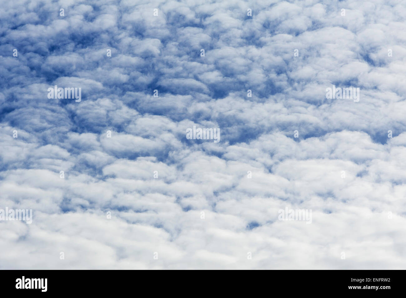 Large fluffy clouds, altocumulus - Stock Image