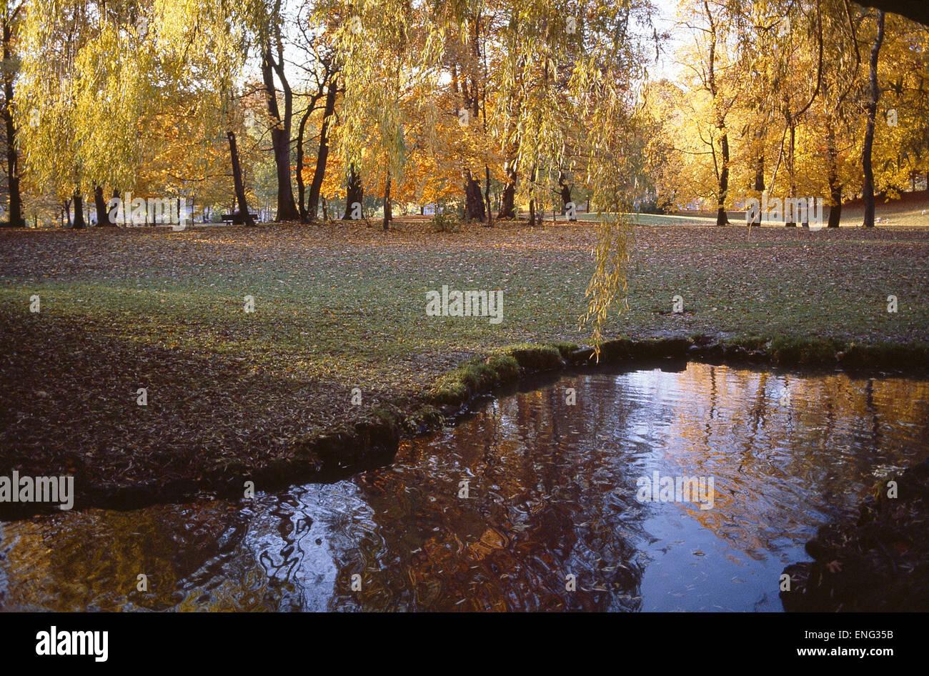 Herbst im Park mit kleinem See - Stock Image