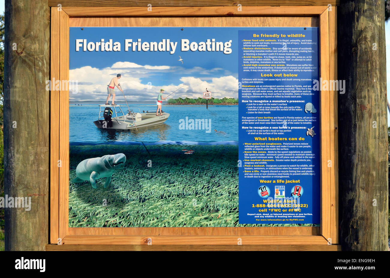An illustrated sign at a boat launching site urges all boaters to be friendly to Florida wildlife, especially manatees, - Stock Image