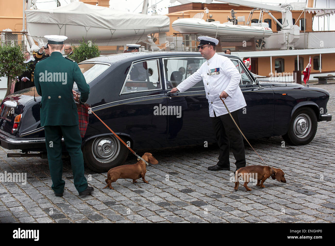 Helsingore, Denmark. 5th May, 2015. The royal Dachshund's followed Queen Margrethe and Prince Consort Henrik onboard - Stock Image