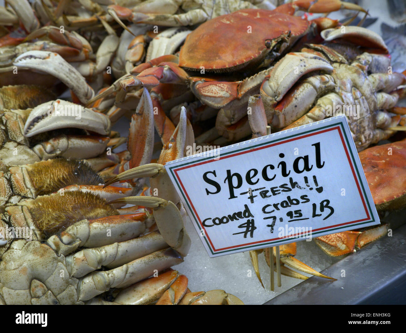 Freshly cooked Dungeness crab on sale with dollar price tag at Monterey Fish Market California USA - Stock Image