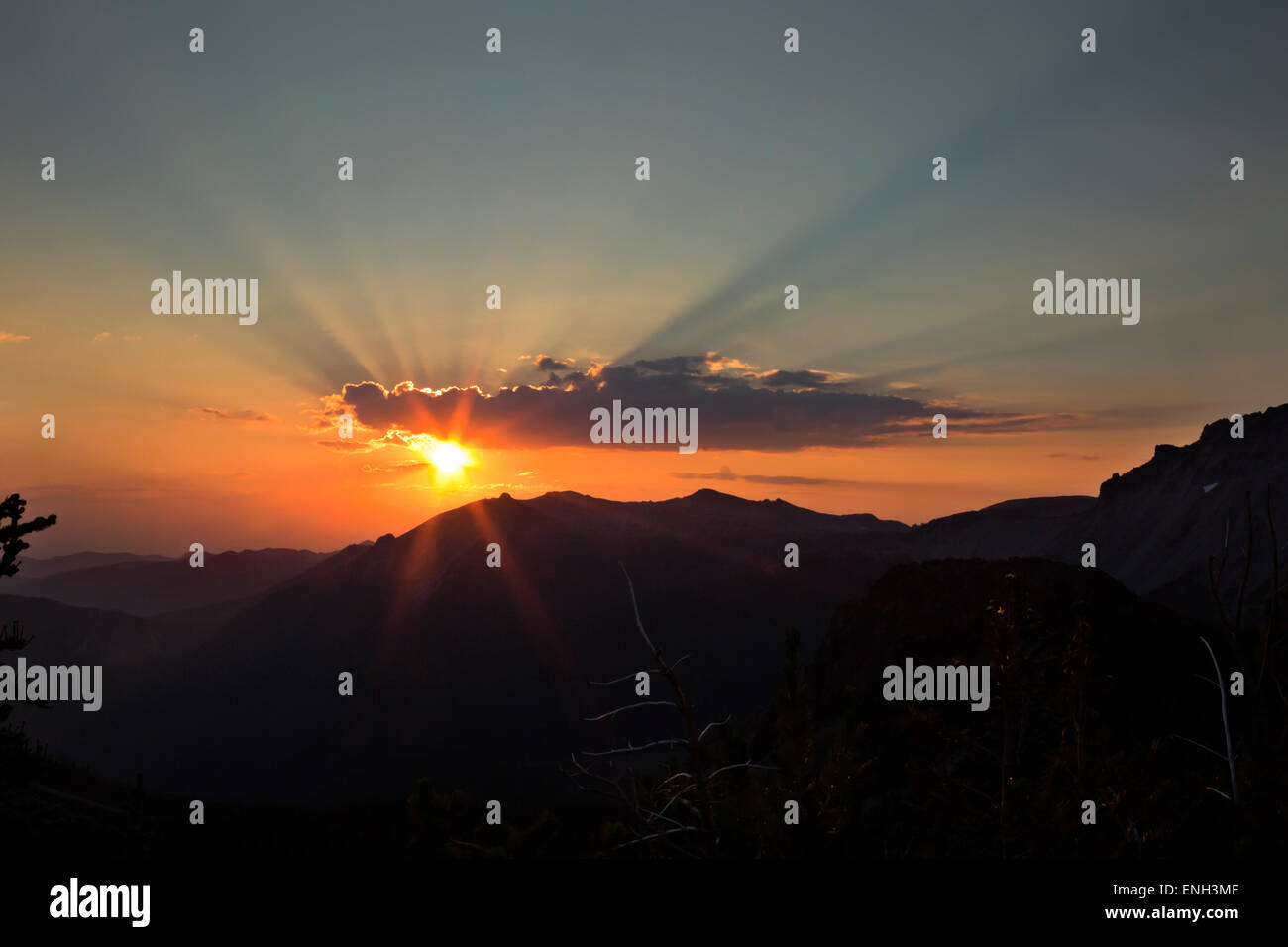 WA10602-00...WASHINGTON - Sun coming up in the early morning on Curtis Ridge in Mount Rainier National Park. - Stock Image