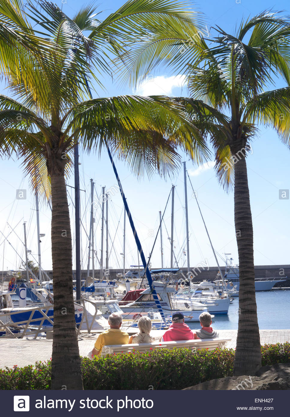 Group of elderly pensioner holidaymakers sitting on bench framed by palm trees enjoying marina view Puerto Calero - Stock Image