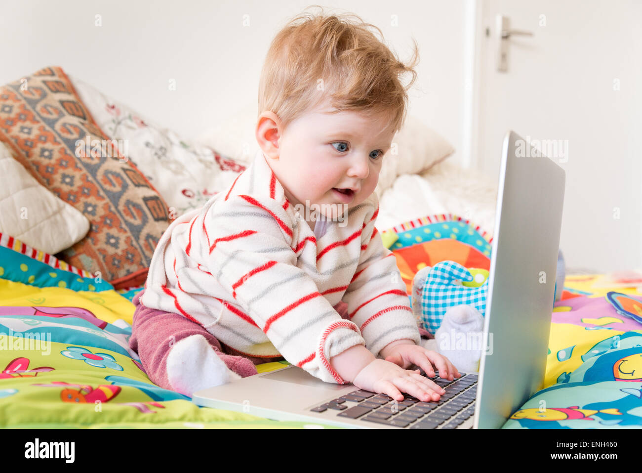 Eight month old baby using laptop computer - Stock Image