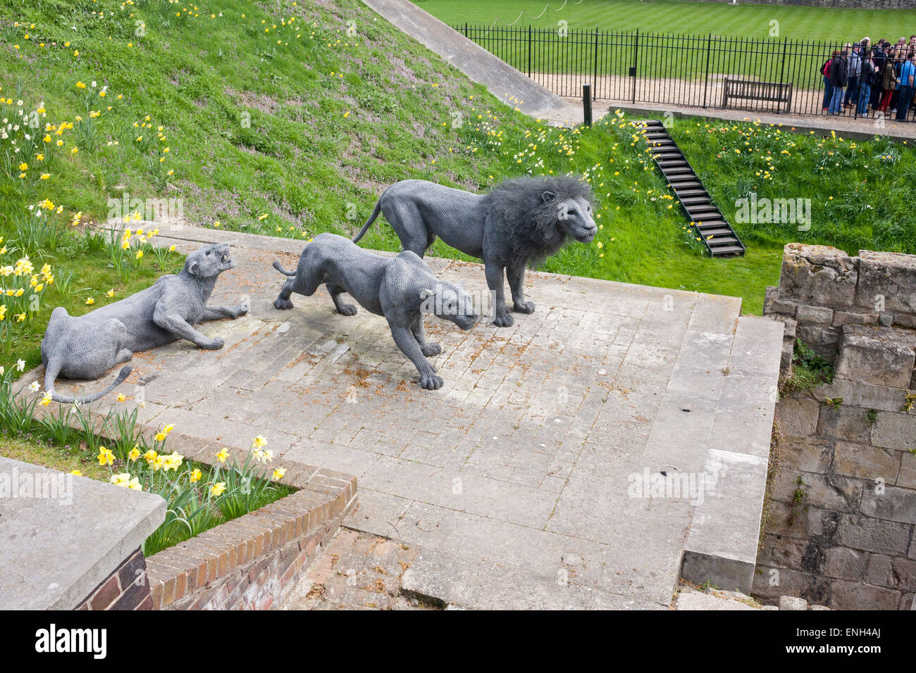 Kendra Haste's sculpture of animals at the Tower of London, as part of the Royal Beasts exhibition about the - Stock Image