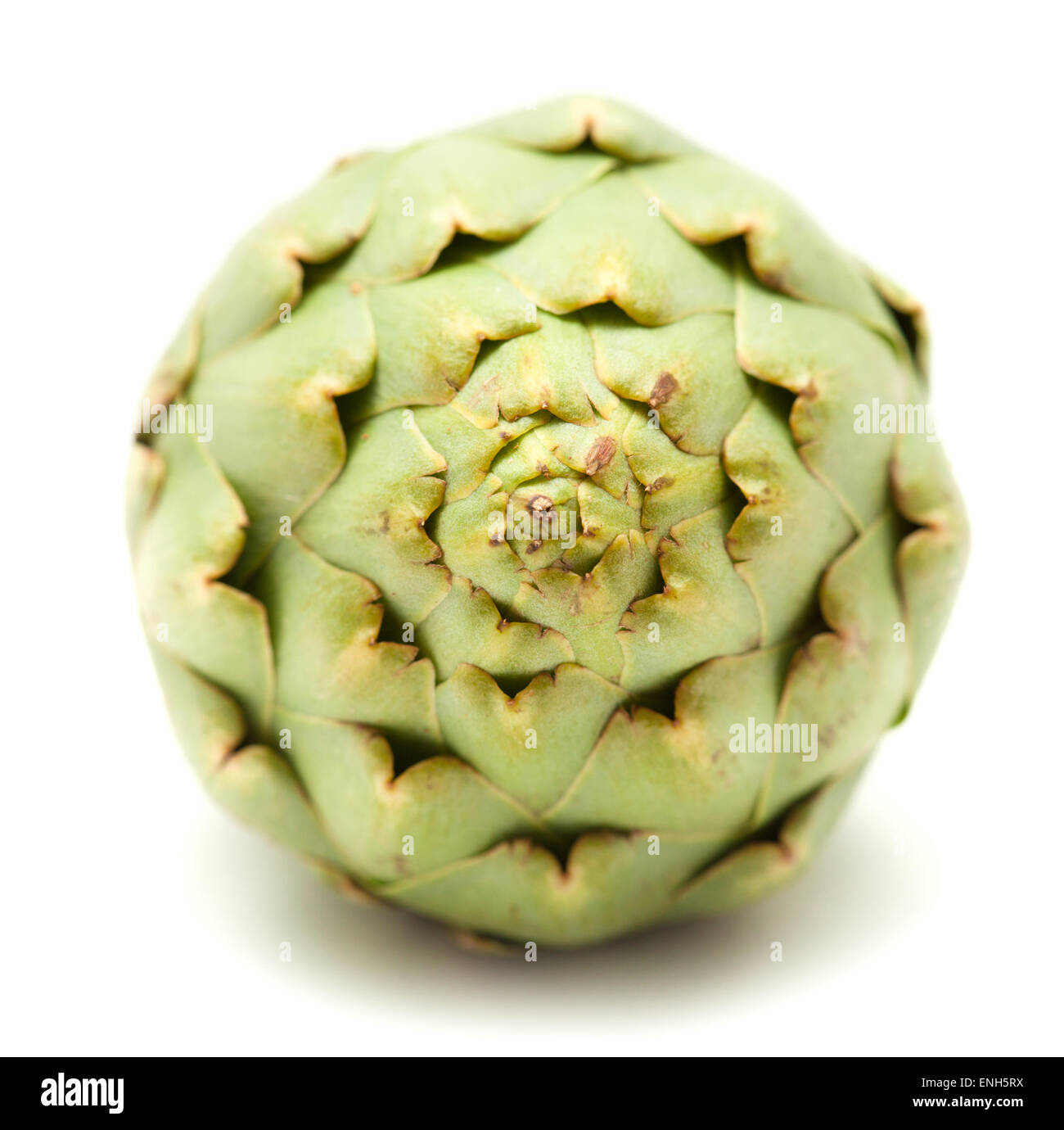 fresh globe artichoke isolated on white background - Stock Image