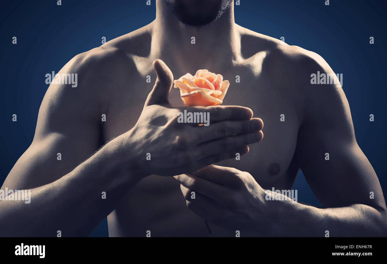 Strong and fit man holding an orange rose - Stock Image
