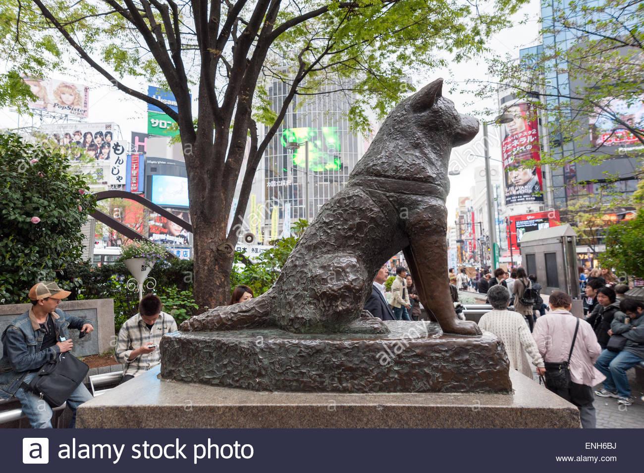 Hachiko dog statue outside Shibuya station, Tokyo, Japan ...