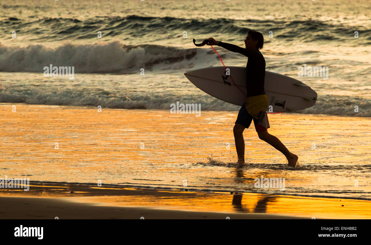 Gran Canaria, Canary Islands. 5th May, 2015. Weather: daily life in Las Palmas on Gran Canaria. Surfer at sunset - Stock Image