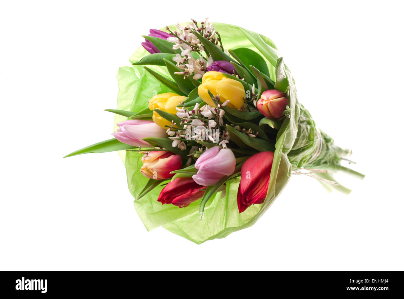 Tulip bouquet with green flower tissue paper. - Stock Image