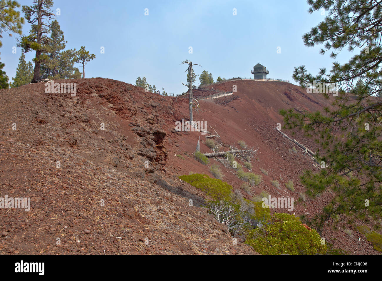 Lava Butte forest trees and crater near Bend Oregon. - Stock Image