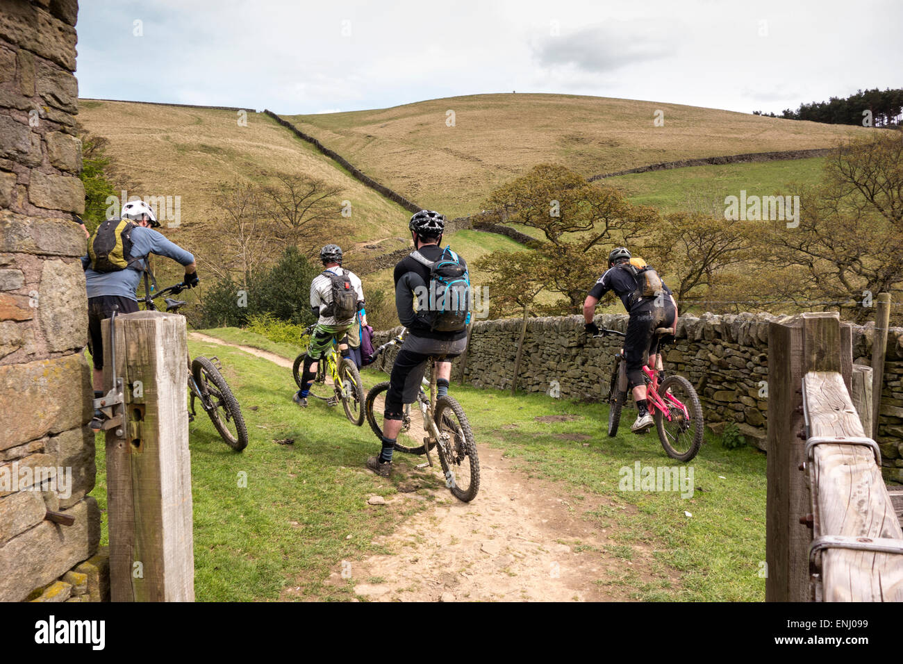 Four mountain bikers having a rest before they continue along the trail in the Derwent Valley in the Peak District - Stock Image