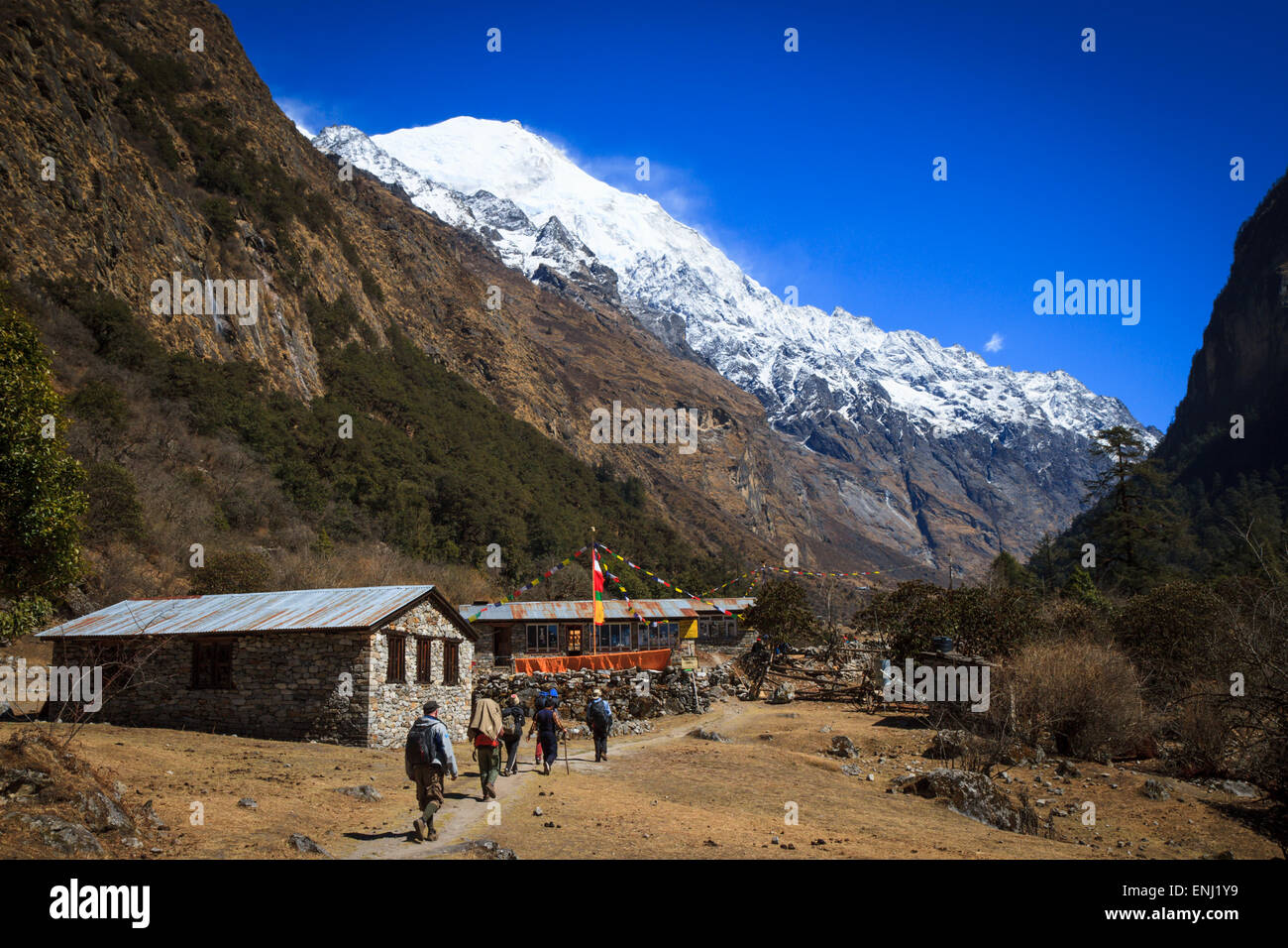 A group of trekkers approaching a guesthouse and restaurant at Ghodatabela, Langtang, Nepal - Stock Image