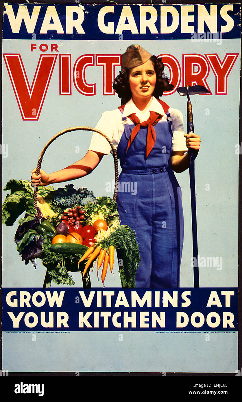 War gardens for victory, Grow vitamins at your kitchen door - Stock Image