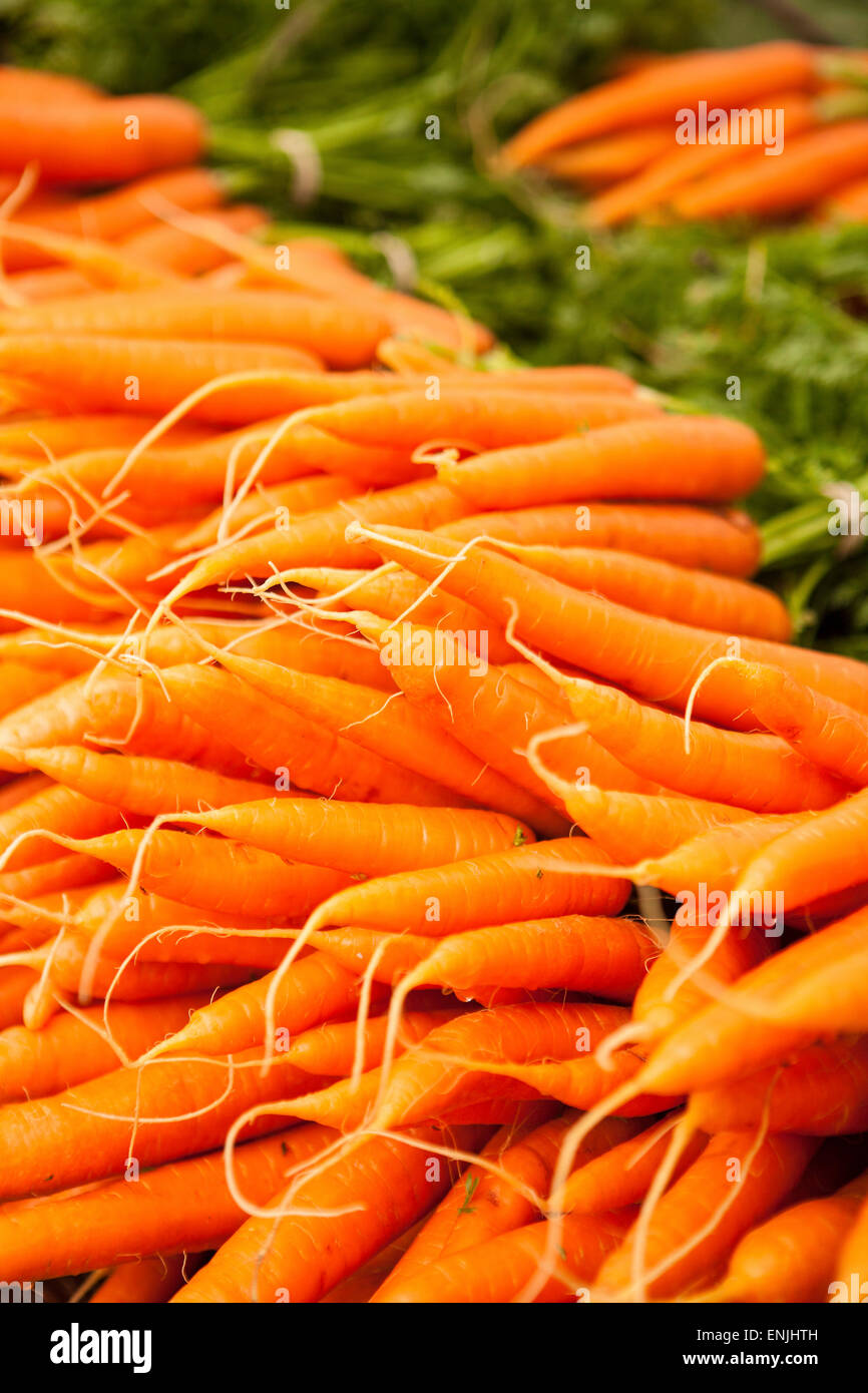 organic carrots for sale, Farmers Market, Santa Barbara, California, United States of America - Stock Image