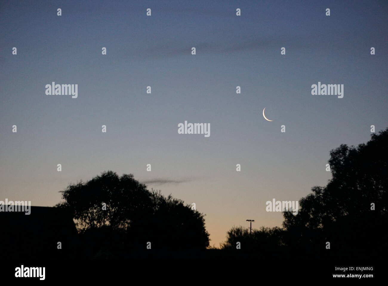 Half moon at dusk over suburban homes. - Stock Image