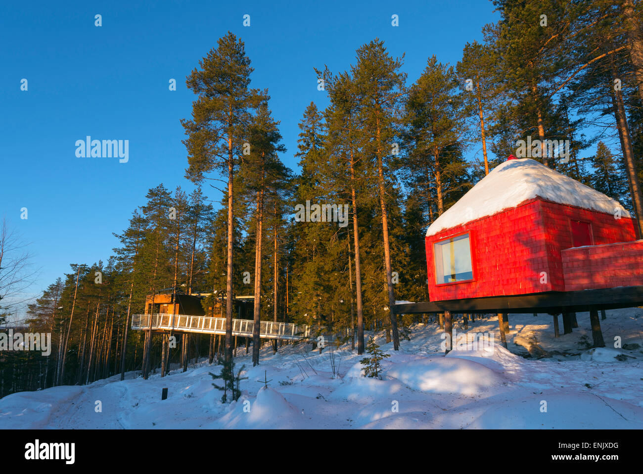 The Blue Cone room, The Tree Hotel, Lapland, Arctic Circle, Sweden, Scandinavia, Europe - Stock Image