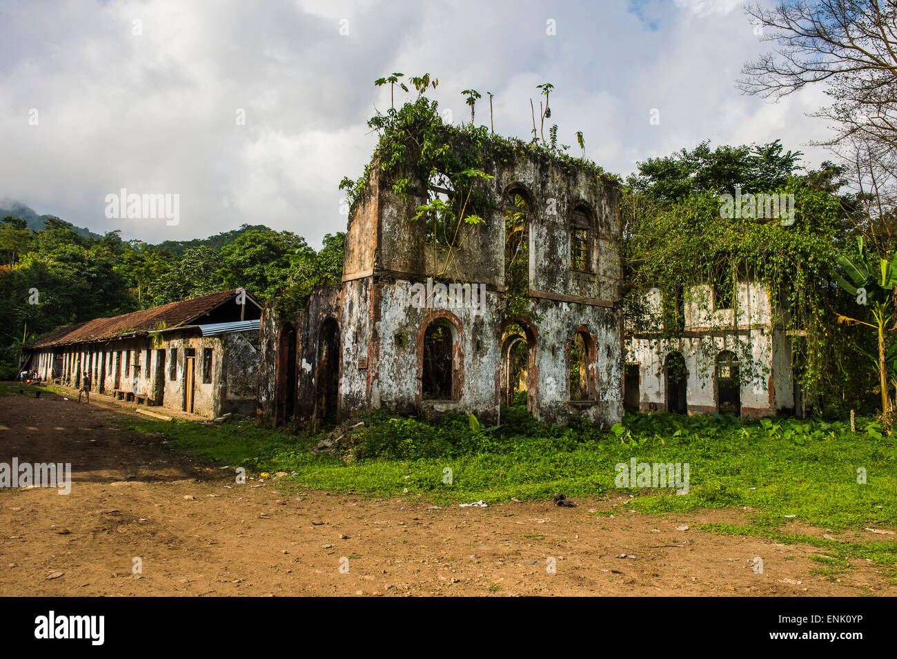 Decaying houses in the old plantation Roca Bombaim in the jungle interior of Sao Tome, Sao Tome and Principe, Atlantic - Stock Image