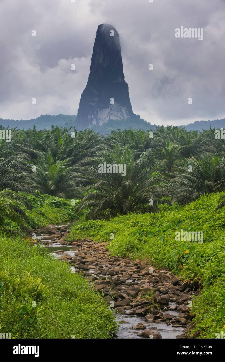 Little creek leading to the unusal monolith, Pico Cao Grande, east coast of Sao Tome, Sao Tome and Principe, Atlantic - Stock Image
