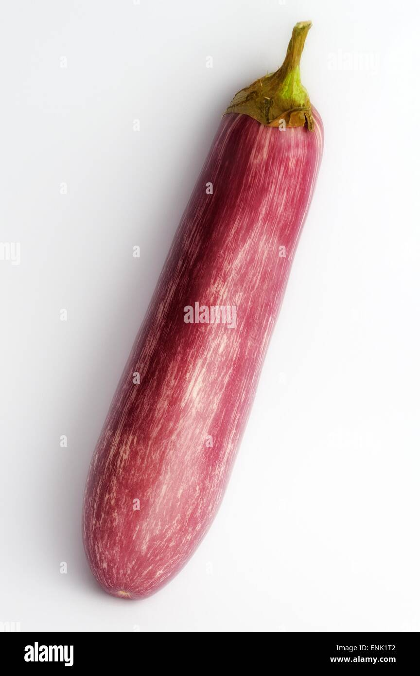 A  raw aubergine on a white studio background. Stock Photo