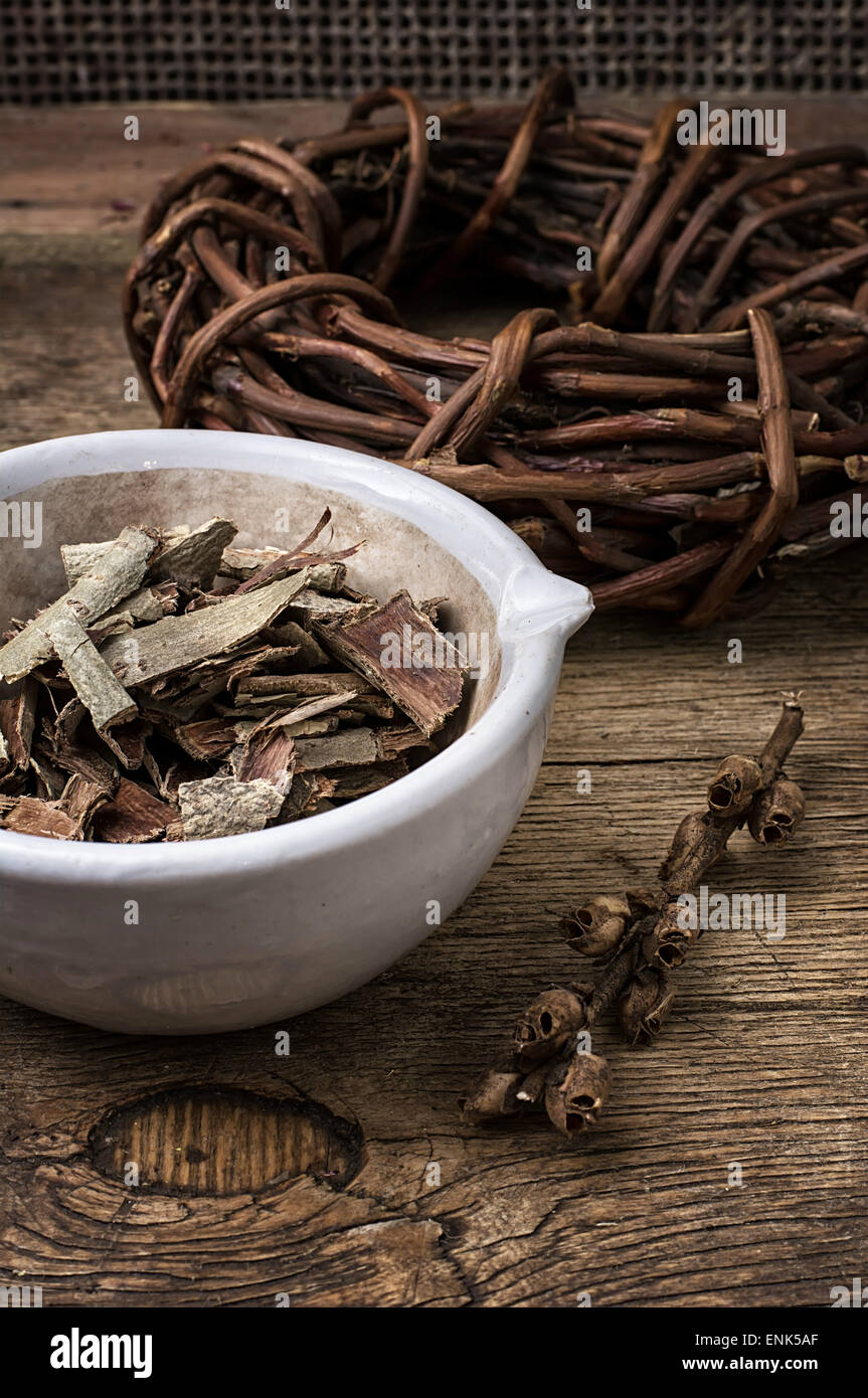 medicinal licorice rolled in  coil and aspen bark on wooden background.Selective focus - Stock Image