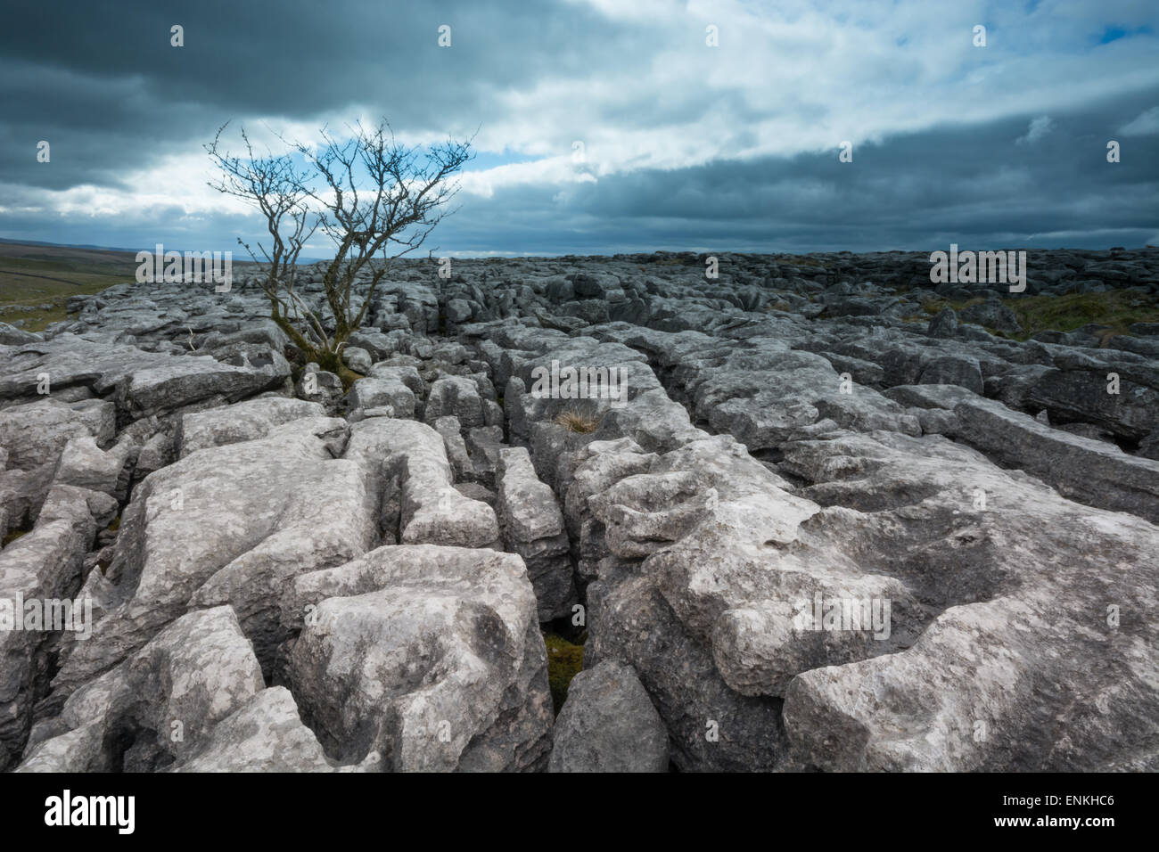 Limestone pavements above Malham in the Yorkshire Dales - Stock Image