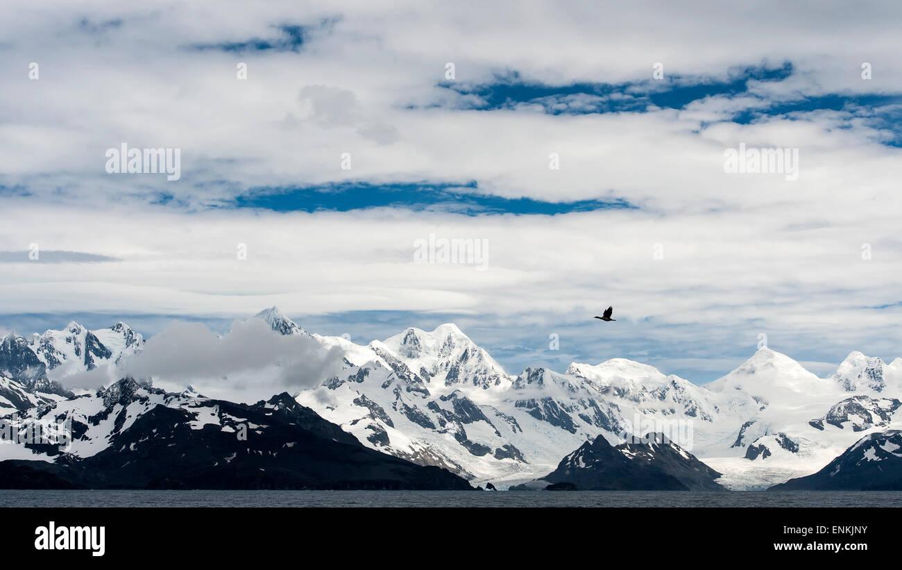 Mountains and coastline of South Georgia - Stock Image