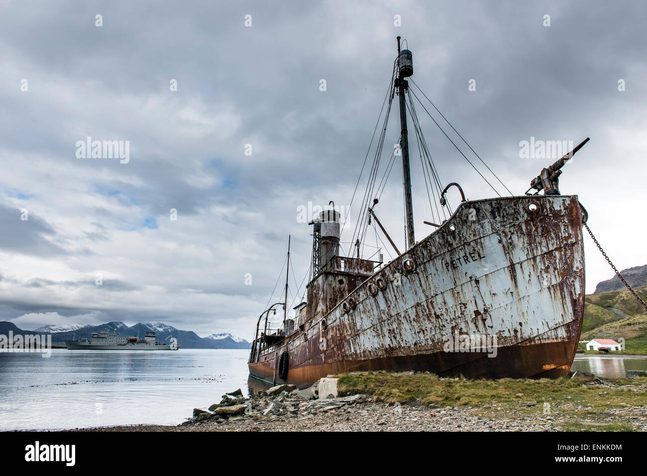 Abandoned rusty vessel at Grytviken South Georgia - Stock Image