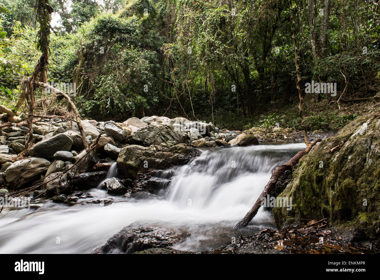 Waterfalls along the Lost City (Ciudad Perdida) trek Sierra Nevada mountains Santa Marta Colombia - Stock Image