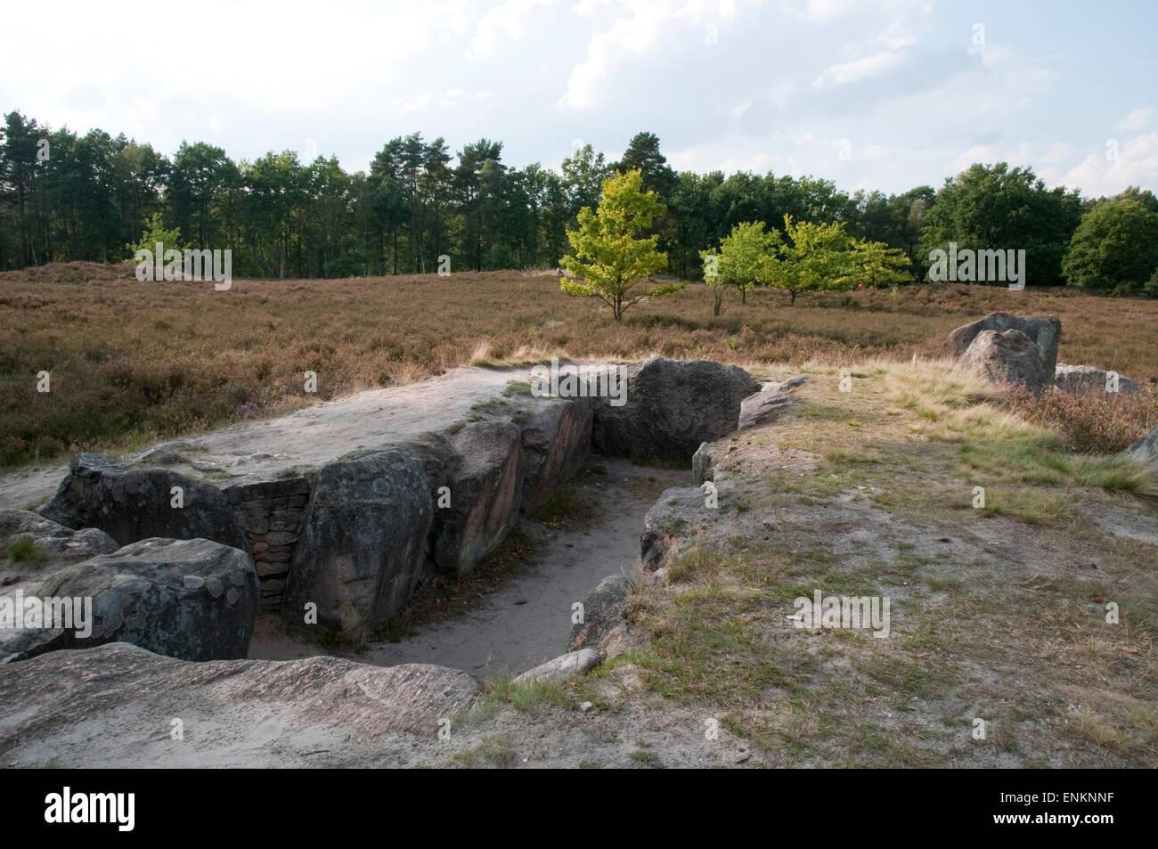 megalithic tomb, Oldendorfer Totenstatt, Lueneburger Heide, Lower Saxony, Germany Stock Photo