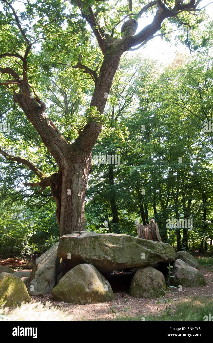 prehistorical tomb, dolmen, Oldenburger Land, Lower Saxony, Germany Stock Photo
