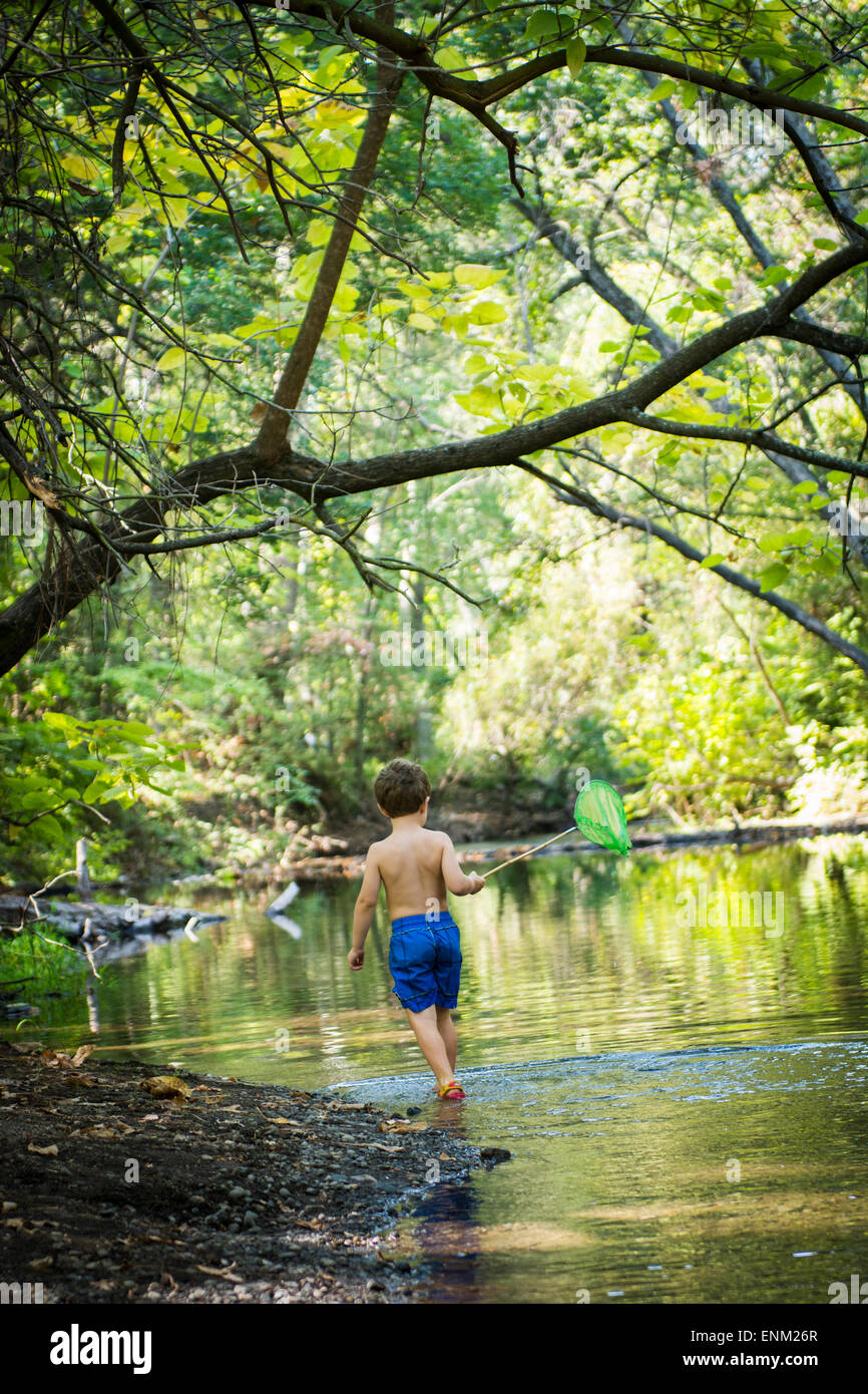 Toddler boy searches for pollywogs with net at creek in Bidwell Park, Chico, California. - Stock Image