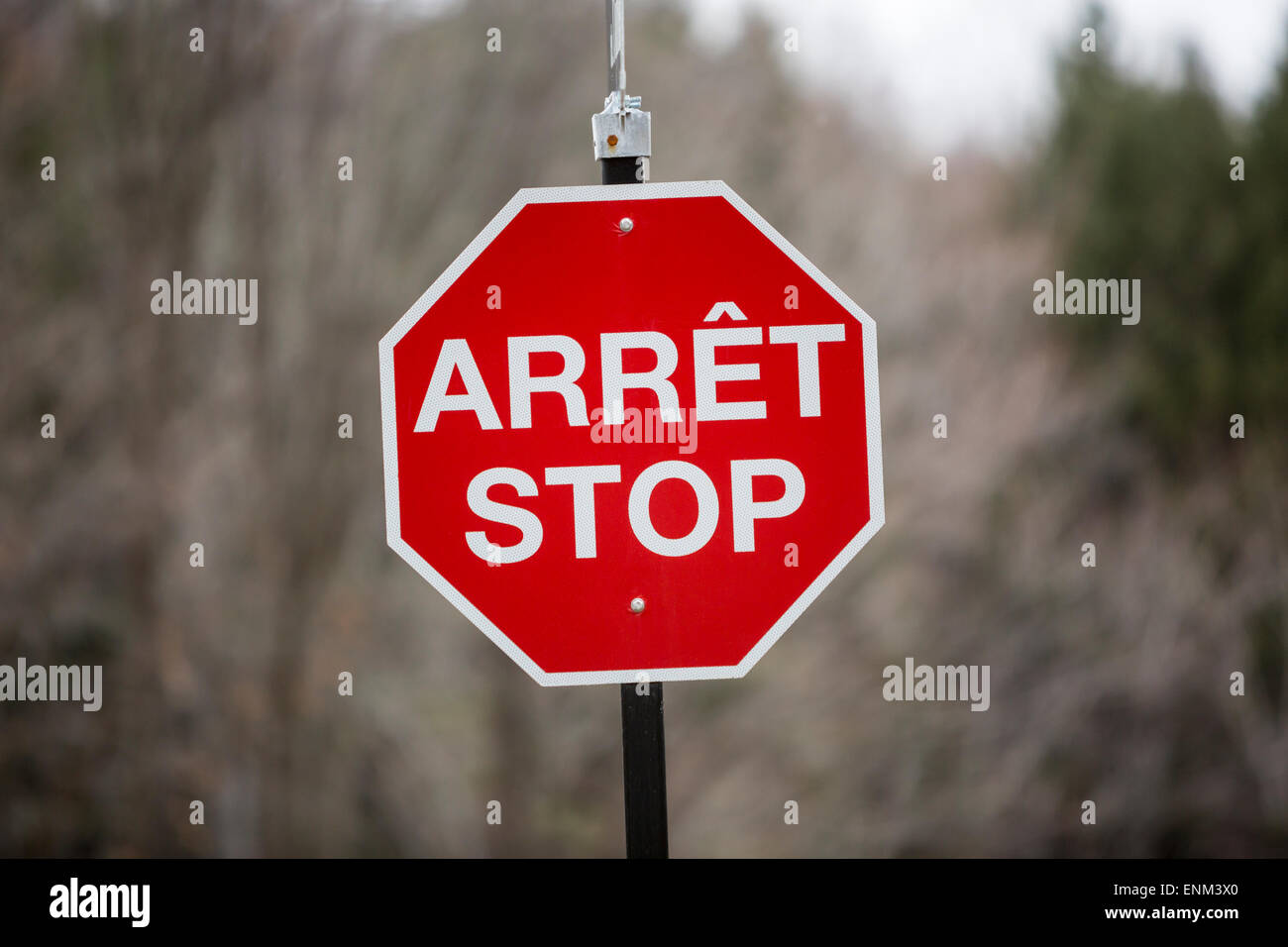 North America, Canada, Quebec, bilingual stop sign - Stock Image