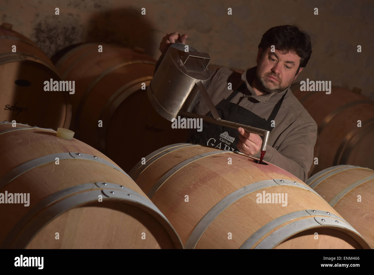 Winemaker Decanting wine in a barrel's cellar - Stock Image