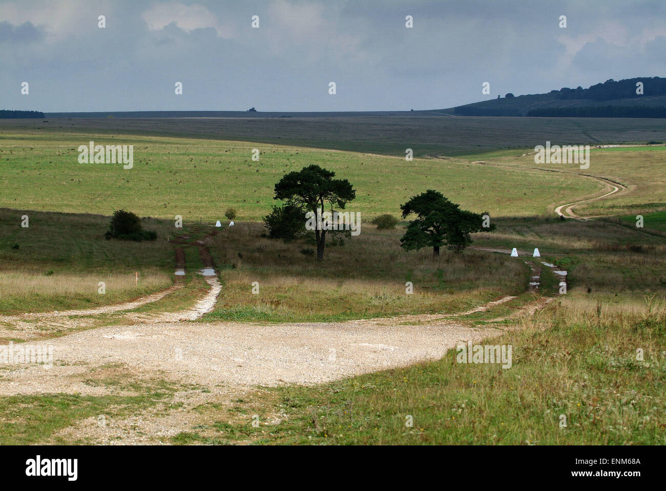 Salisbury Plain, Wiltshire, UK, used as a military training area by the British Army. Pictures show redundant Chieftan - Stock Image
