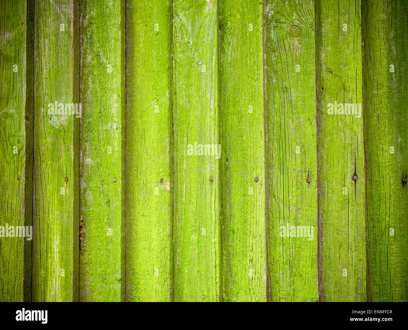 Closeup on a mossy wooden fence - Stock Image