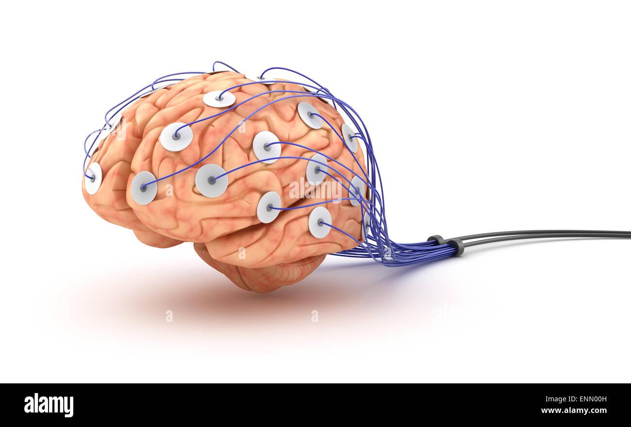 Brain analysis. Polygraph test Stock Photo: 82210257 - Alamy