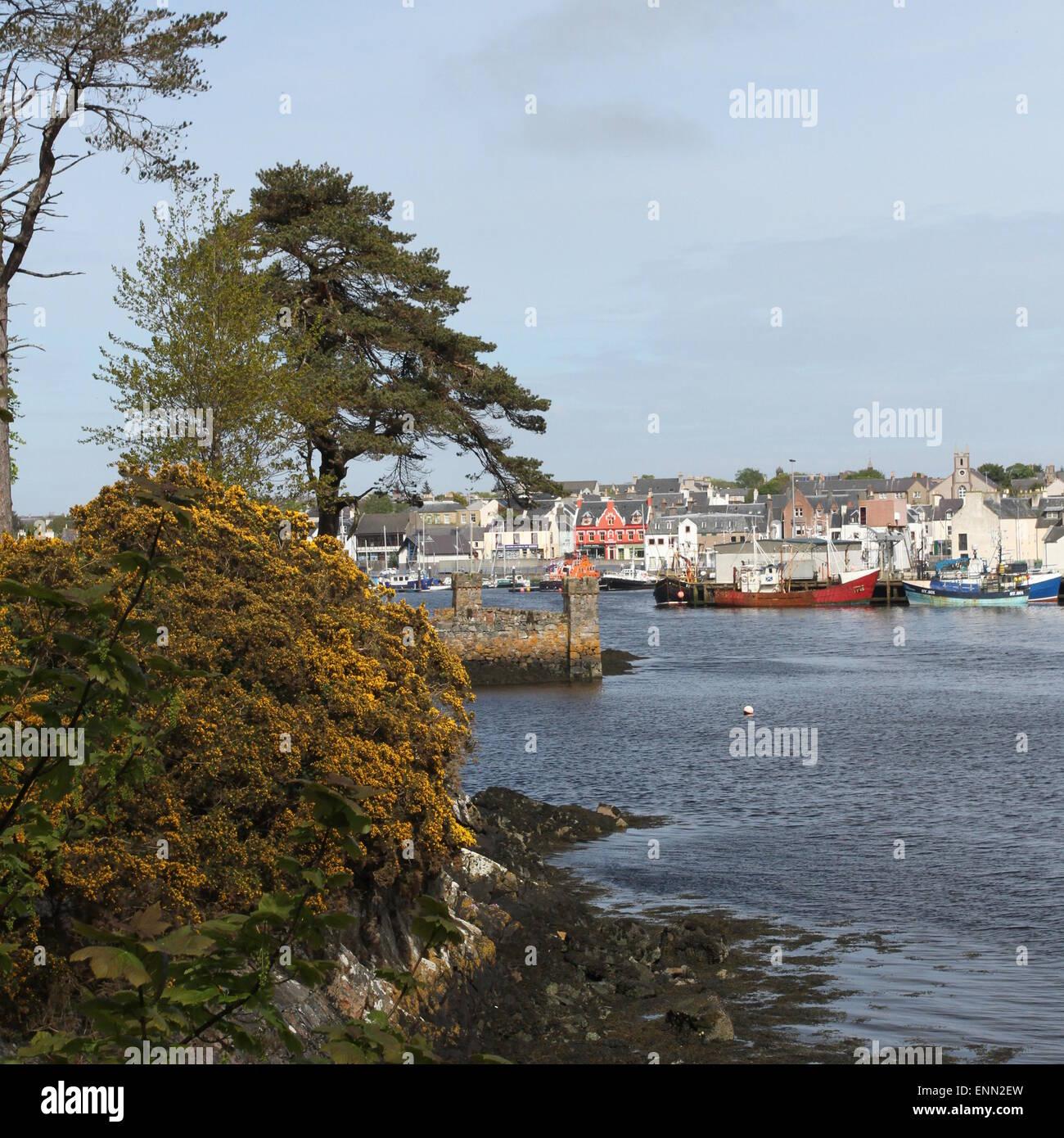 Stornoway Lewis Scotland  May 2014 - Stock Image