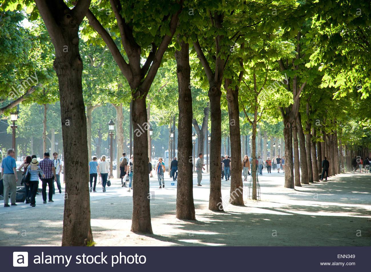 Paris, Champs-Elysees - Stock Image
