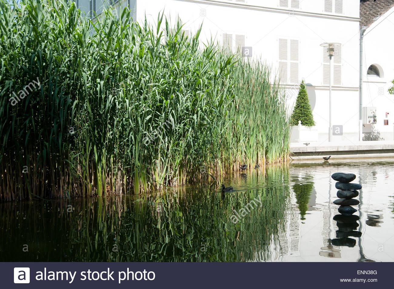Paris, Parc de Bercy, 128 Quai de Bercy, 75012 Paris, Jardins de la Memoire - Stock Image