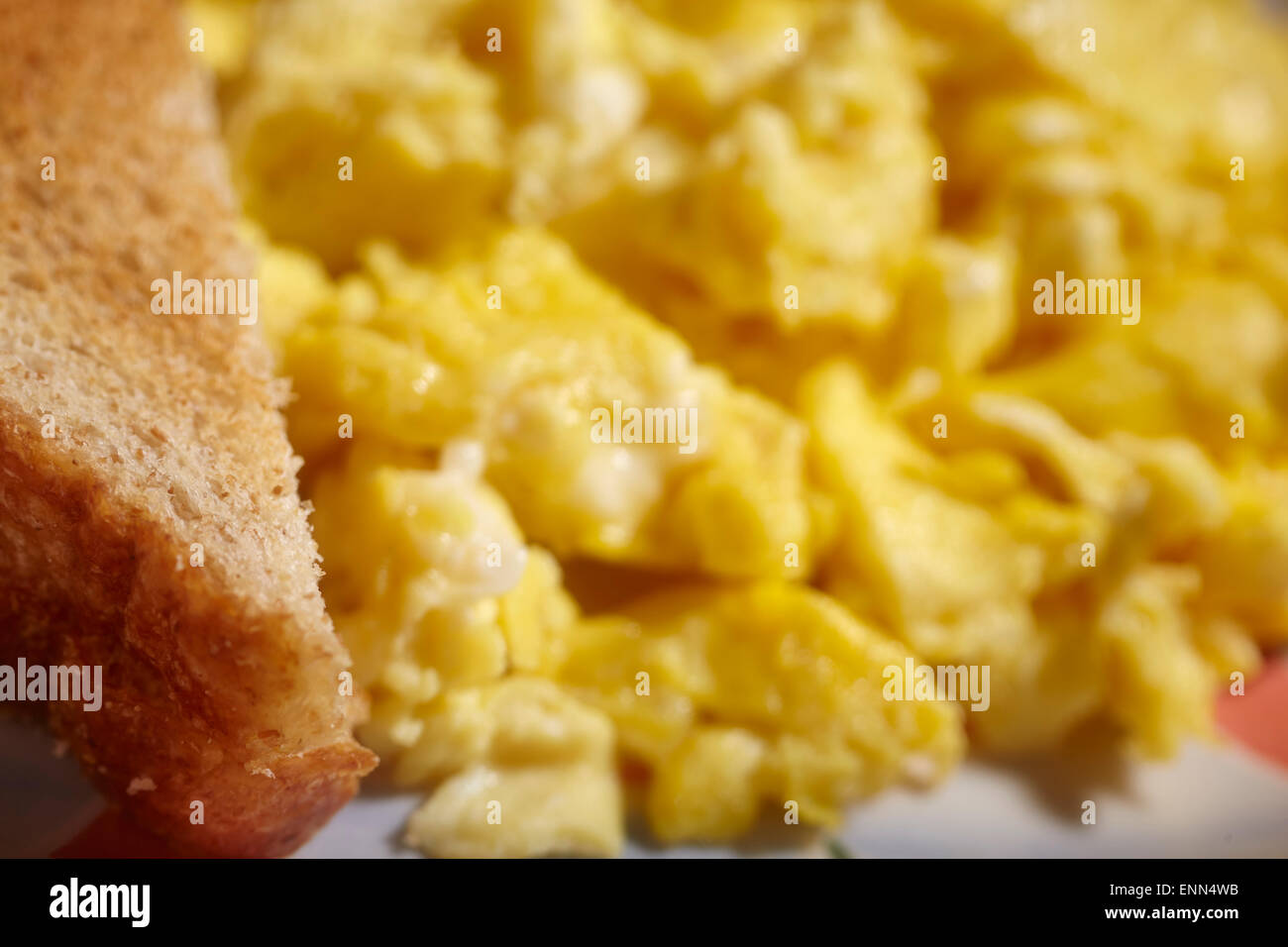 Scrambled eggs and whole wheat (or wholemeal) toast - Stock Image