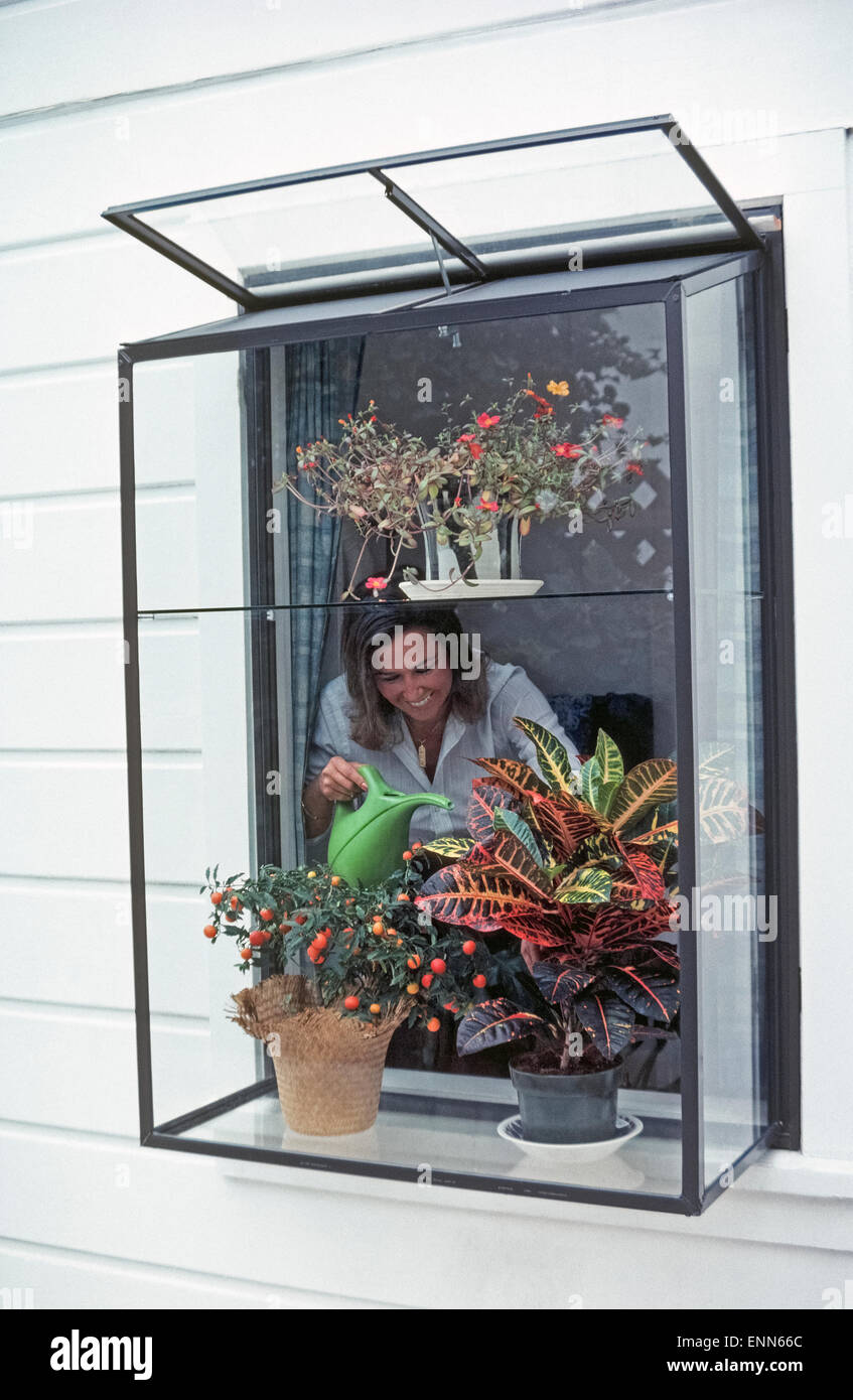 installing a greenhouse window in a home is a popular way to nurture