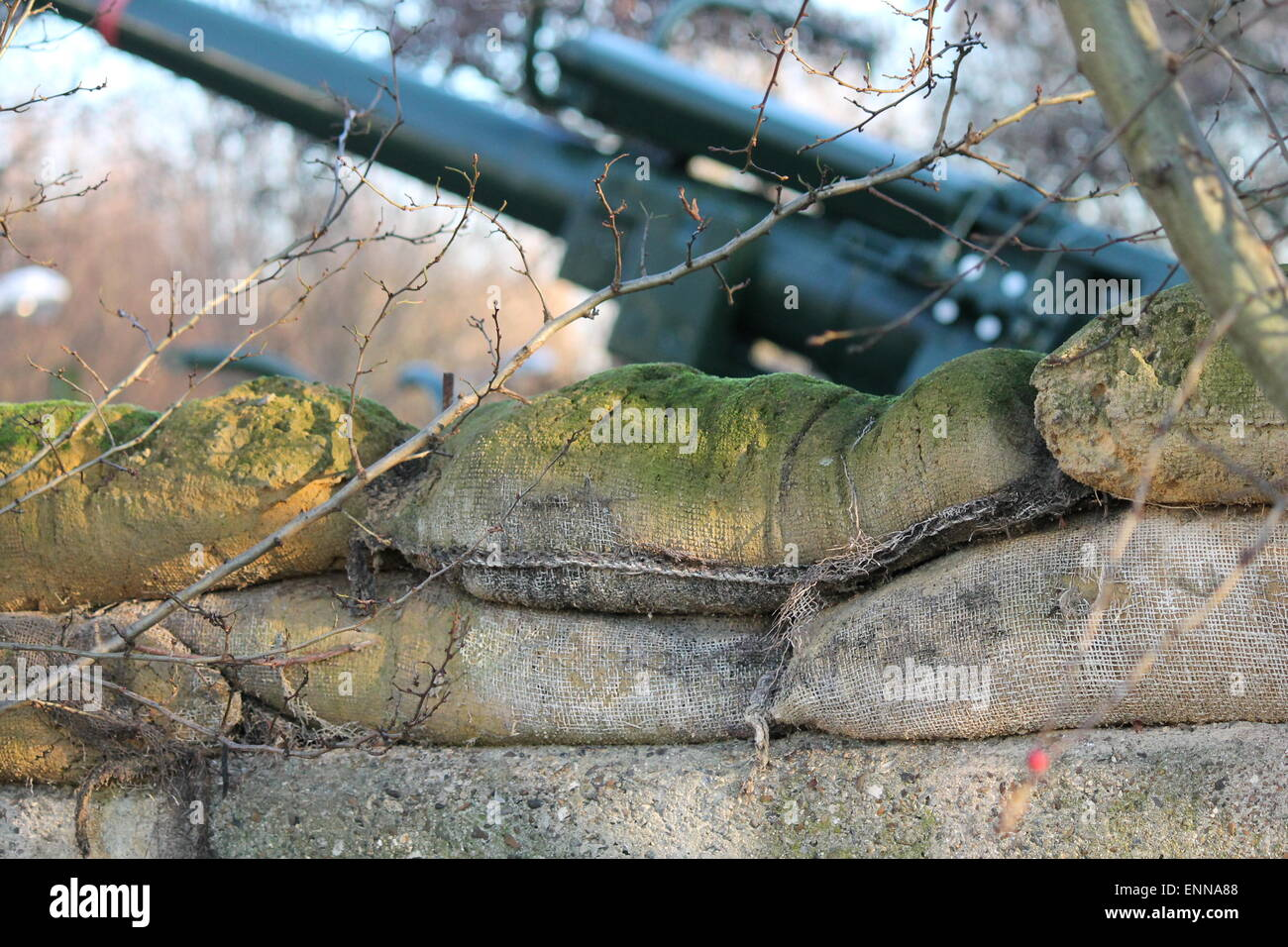 3.7' ack-ack gun from the time of Second World War- One of 4 guns at Mudshute London anti aircraft defense of - Stock Image