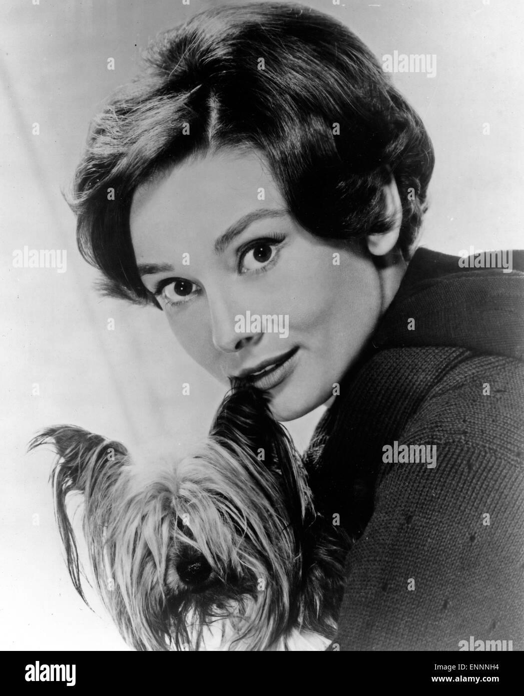 Publicity Shot von Audrey Hepburn aus den 50er Jahren - Stock Image