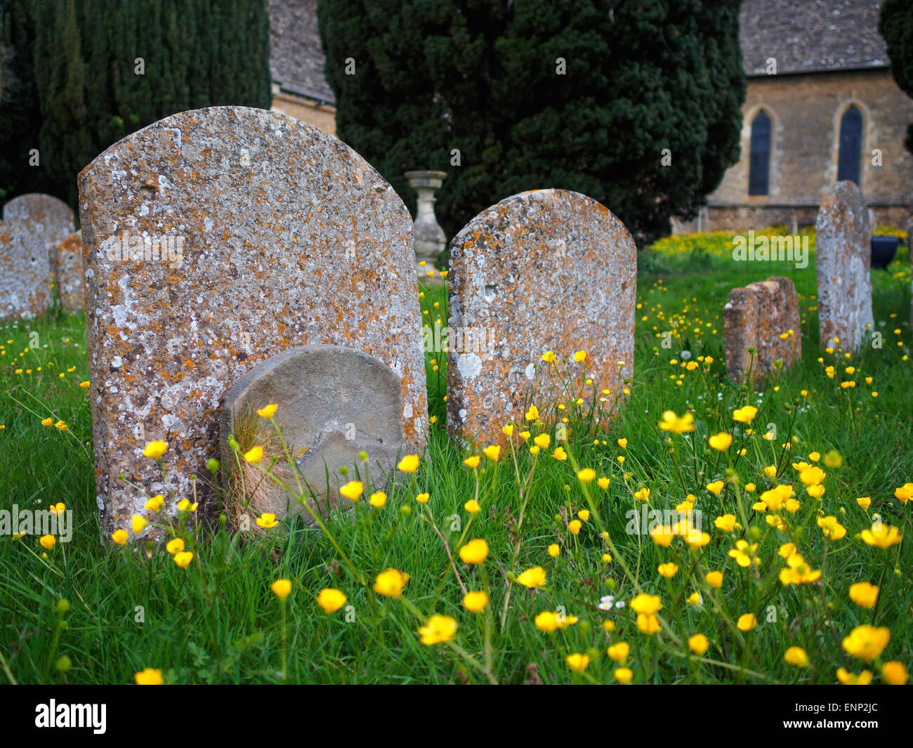 Old grave stones amongst the flowers in the church yard at Faringdon, Oxfordshire, UK. - Stock Image